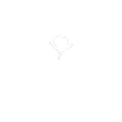 Beaufleur
